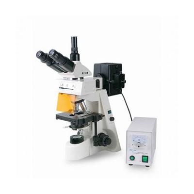 Microscopio Trinocular Epifluorescencia XSZ-146AT, Óptica Plana Corregida A Infinito, 4 Objetivos 1000x, Revólver, Lámpara Epi HBO, Koehler LED